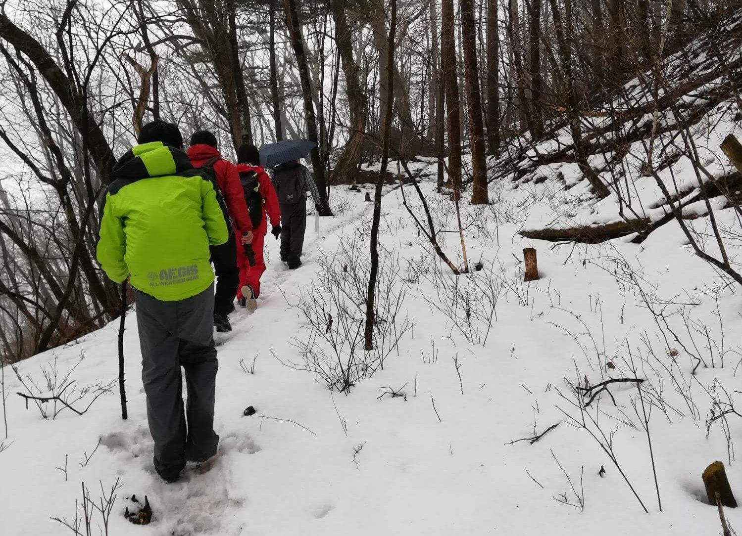 新雪の足跡